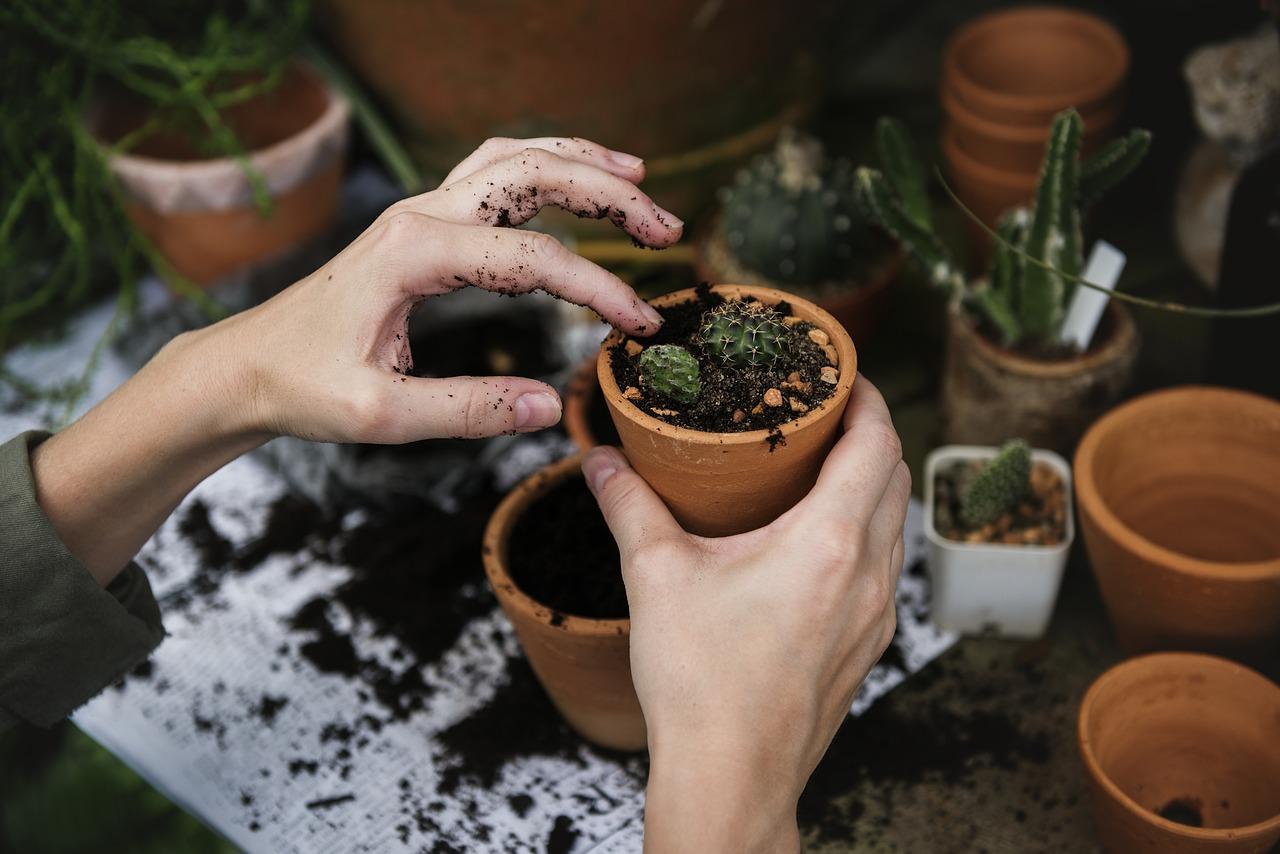 assistance téléphonique jardinage