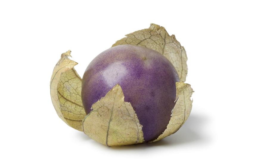 Le coqueret violet