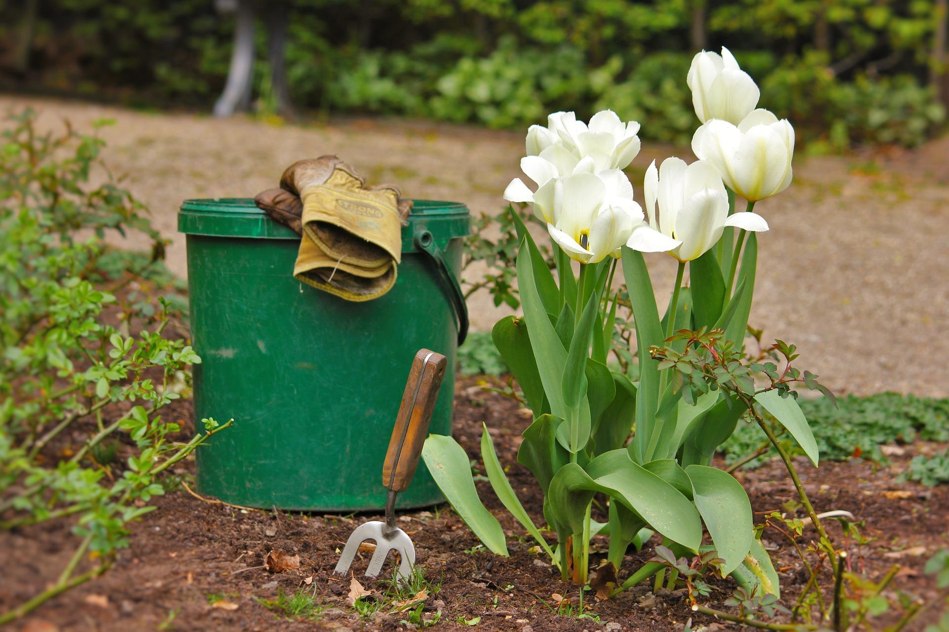 entretien du jardin par des jardiniers