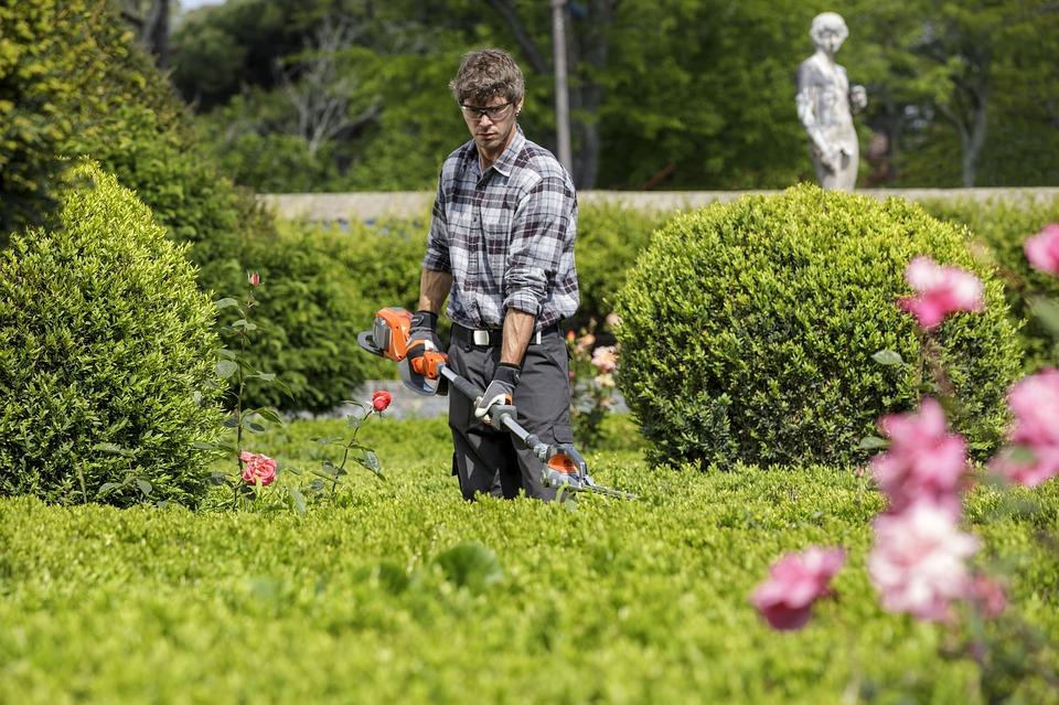jardinpaysage1