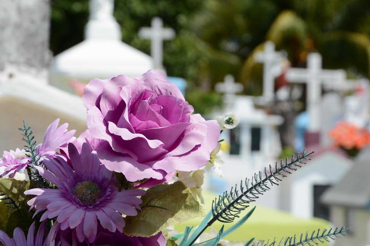 plantes cimetière