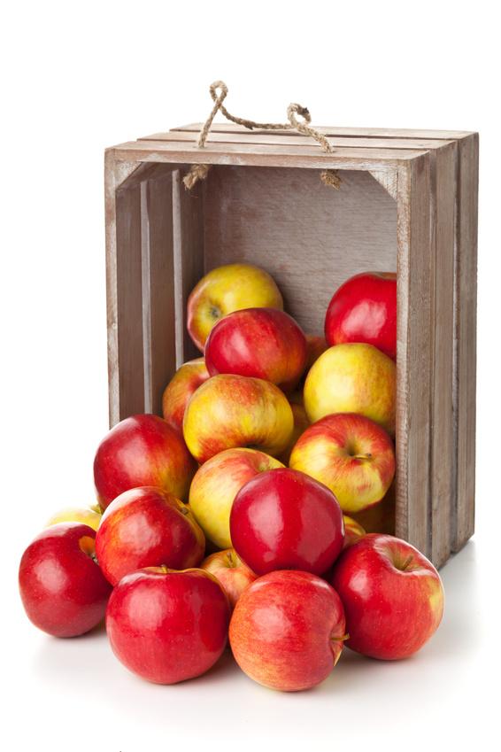 pommes s'échappant d'un cageot