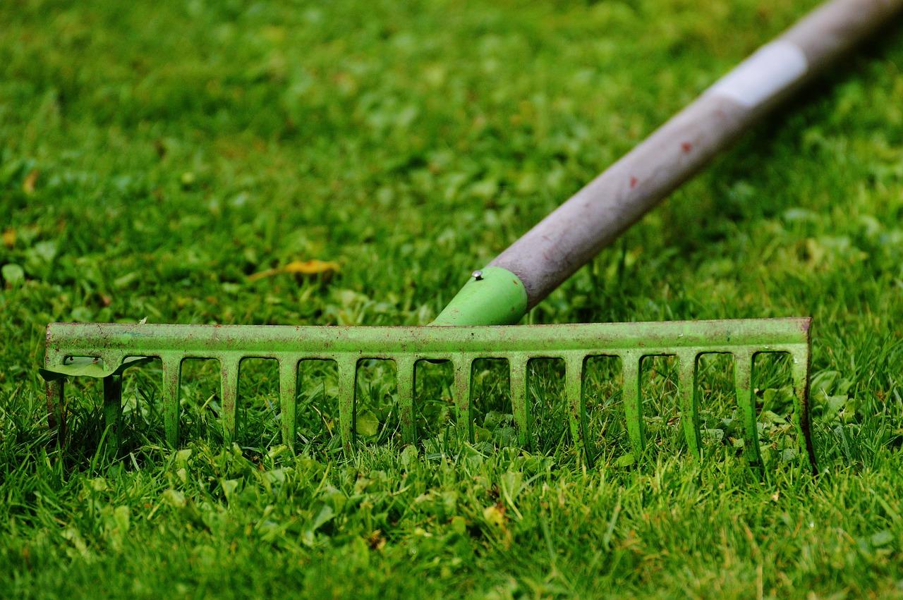 service à la personne jardinage